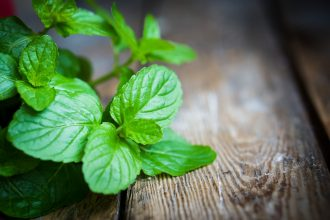 3 natural hair products peppermint oil